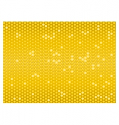 cells of a honeycomb seamless vector image