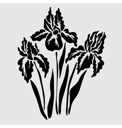 Decorative iris vector