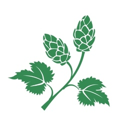 Green hops icon vector