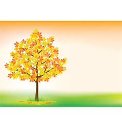 autumn maple vector image vector image