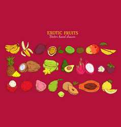 Colored exotic and tropical fruits set vector