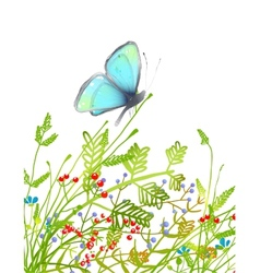 Hand Drawn Delicate Blue Butterfly Sitting on vector image