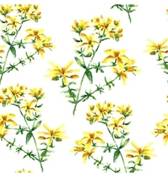 Watercolor hypericum herbs seamless pattern vector image vector image