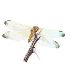 Dragon-fly vector image