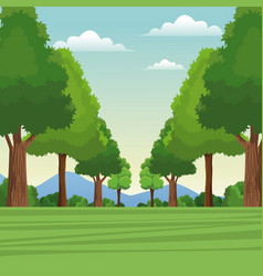 Tree forest natural sky meadow mountain vector