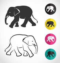 image of an elephant vector image