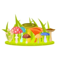 Forest mushrooms on grass lawn vector