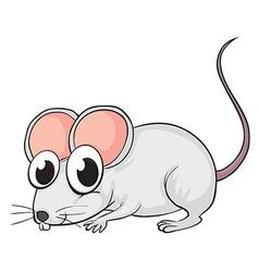 A mouse vector