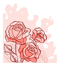 Bouquet of red roses vector image