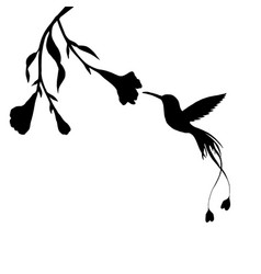 hummingbird and flower silhouettes vector image vector image