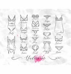 Underwear classic icons vector