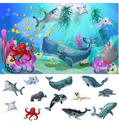 cartoon sea and ocean fauna concept vector image