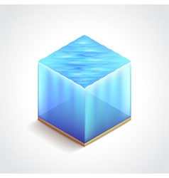 Isometric water cube vector image