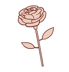 A rose flower vector