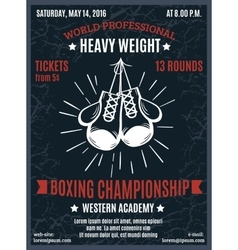 Boxing Professional Championship Poster vector image