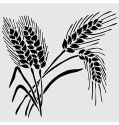 Decorative wheat vector