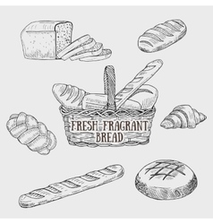 Graphic kinds of bread include bread basket vector