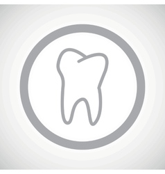 Grey tooth sign icon vector