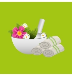 Spa treatment icon vector