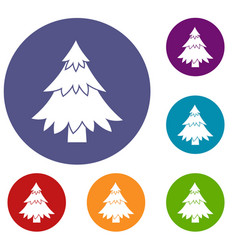 coniferous tree icons set vector image