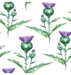 Watercolor milk thistle herb seamless pattern vector