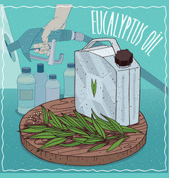 Eucalyptus oil used for fuel production vector