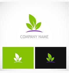 green leaf organic plant logo vector image vector image