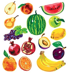 Fruit color on white background vector