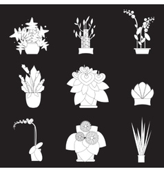 Silhouette icons of houseplants indoor and office vector