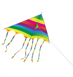 bright kite vector image vector image