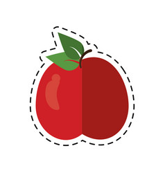 cartoon tasty apple natural food vector image