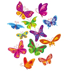 colorful butterfly set vector image