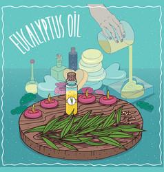 Eucalyptus oil used for soap making vector