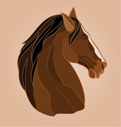 The head of a brown horse stallion drawing vector image