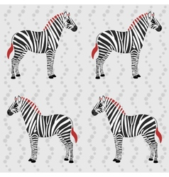 Zebra pattern with flower stripes vector