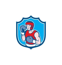 Amateur Boxer Stance Shield Cartoon vector image