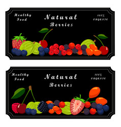 the sweet berry vector image