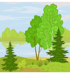 Landscape forest river vector