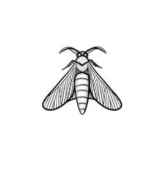 locust hand drawn sketch icon vector image
