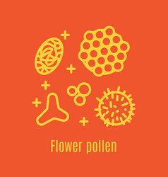 pollen a product of bees and beekeeping vector image