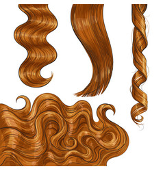 Shiny long red fair straight and wavy hair curls vector