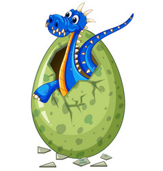 Blue dragon comes out of egg vector