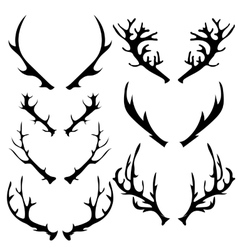 Different horns vector