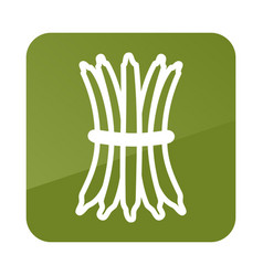 green bean outline icon vegetable vector image