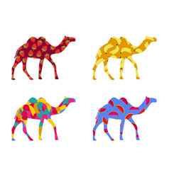 Bactrian camel indian camel with a pattern vector