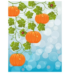 floral background with a pumpkin vector image