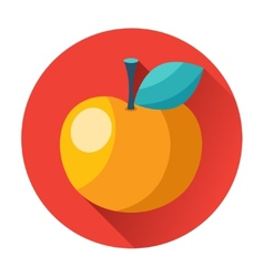 Knowledge juicy apple with leaf icon vector image