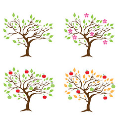Apple tree season vector