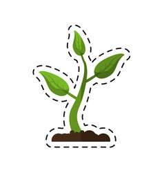 Cartoon sprout growing plant eco vector