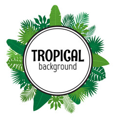Tropical leaves background summer design vector